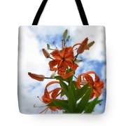 Tigers In The Clouds 8567 Tote Bag
