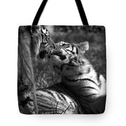 Tigers Kissing Tote Bag
