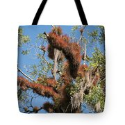 Tikal Furry Tree Closeup Tote Bag