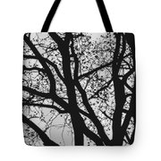 Tilia Night Silhouette Tote Bag