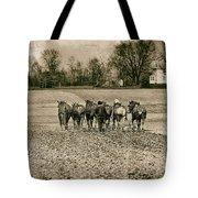 Tilling The Fields Tote Bag by Tom Mc Nemar