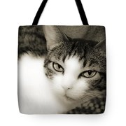 Tilly Little Miss Attitude Tote Bag