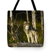 Timber Ghost Wolf Tote Bag