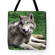 Timber Sunning Tote Bag