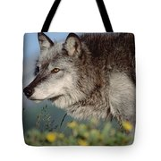 Timber Wolf Adult Portrait North America Tote Bag