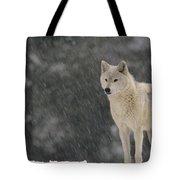 Timber Wolf Female North America Tote Bag