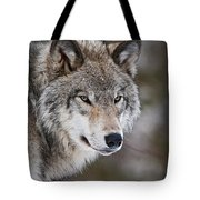 Timber Wolf Pictures 1067 Tote Bag