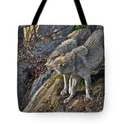 Timber Wolf Pictures 1094 Tote Bag