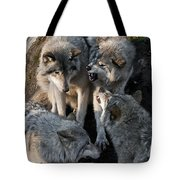 Timber Wolf Pictures 1096 Tote Bag