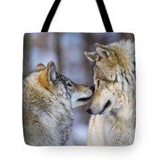 Timber Wolf Pictures 1230 Tote Bag