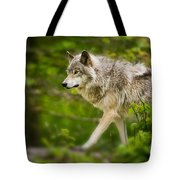 Timber Wolf Pictures 1329 Tote Bag
