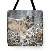 Timber Wolf Pictures 1397 Tote Bag