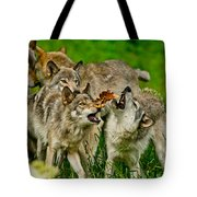 Timber Wolf Pictures 1593 Tote Bag