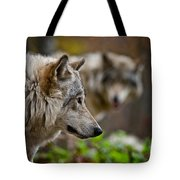 Timber Wolf Pictures 1693 Tote Bag