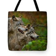 Timber Wolf Pictures 1710 Tote Bag