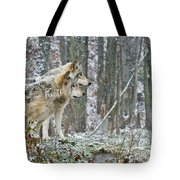 Timber Wolf Pictures 184 Tote Bag