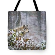 Timber Wolf Pictures 186 Tote Bag