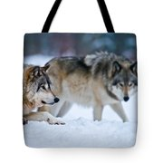 Timber Wolf Pictures 190 Tote Bag