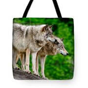 Timber Wolf Pictures 191 Tote Bag