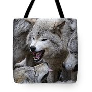 Timber Wolf Pictures 210 Tote Bag