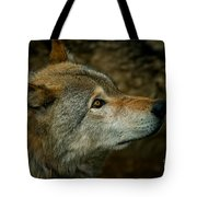 Timber Wolf Pictures 268 Tote Bag