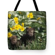 Timber Wolf Pups And Flowers North Tote Bag