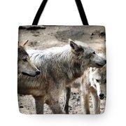 Timber Wolves Tote Bag