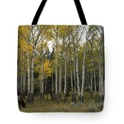 Time Fading Tote Bag