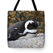 Time For A Snooze Tote Bag