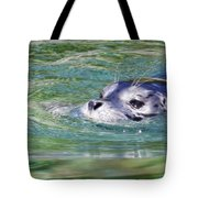 Time For A Swim Tote Bag