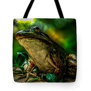 Time Spent With The Frog Tote Bag