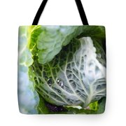 Tinted Tracery  Tote Bag