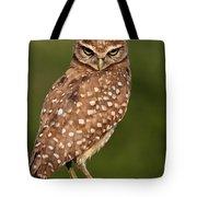 Tiny Burrowing Owl Tote Bag