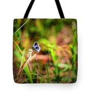 Tiny Butterfly Tote Bag
