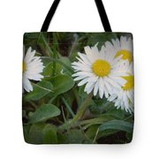 Tiny Daisies Tote Bag