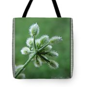 Tiny Flower Head Before Bloom Tote Bag