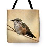 Tiny Hummingbird Resting Tote Bag