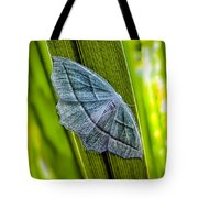 Tiny Moth On A Blade Of Grass Tote Bag