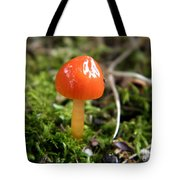 Tiny Orange Mushroom Tote Bag
