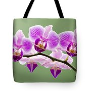 Tiny Orchid Faces Tote Bag