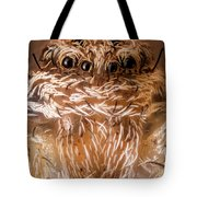 Tiny Spider 201 Tote Bag