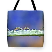 Tiny Waterworld And A Leaf Tote Bag