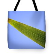 Tip Of An Iris Leaf Isolated On Blue Tote Bag