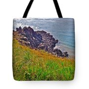 Tip Of Cape D'or-ns Tote Bag