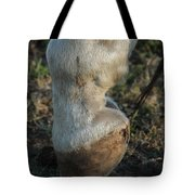 Tip Toeing Through The Fields. Tote Bag