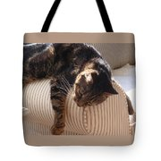 Tired Kitty Tote Bag