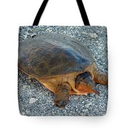 Tired Turtle Tote Bag