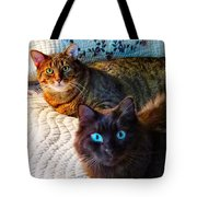 Tired Two Tote Bag