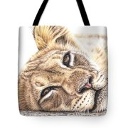 Tired Young Lion Tote Bag