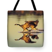 Tk0157, Thomas Kitchin Canada Geese Tote Bag